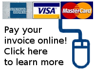 Pay online using your credit or debit card