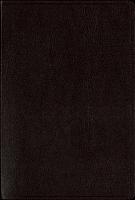 KJV Super Giant Print burgundy 96421