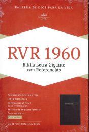 Spanish Bible Giant Print