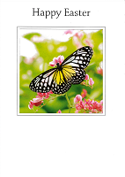 Easter Card TS20099/2 (Pack of 5)