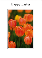 Easter Card TS20099/5 (Pack of 5)