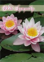 Sympathy Card TE50199A