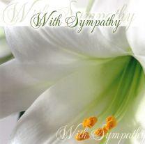 Sympathy Card TE40689A