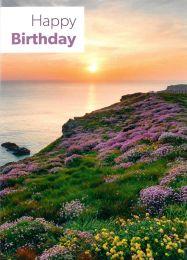 Birthday Card TE5223XA
