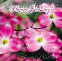 Birthday Card TE40759A