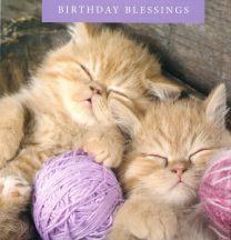 Birthday Card TE40779A