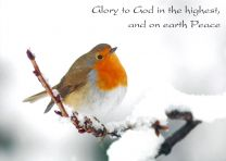 Christmas Cards, Snowy Robin, GMC018