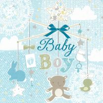 Baby Boy Birth Congratulation Card CL292