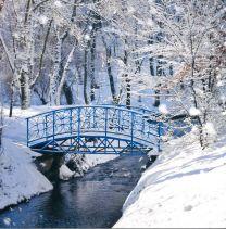Christmas Card, Winter Bridge, L1922