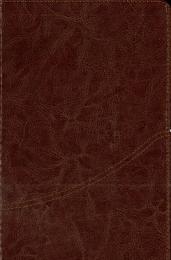 Bible Farsi