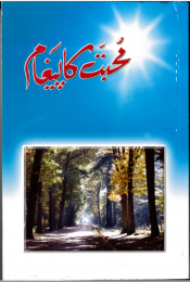 New Testament - Urdu