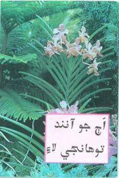 St. Matthew Gospel - Sindhi