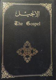 New Testament, contemporary version