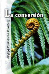 Conversion (spanish)
