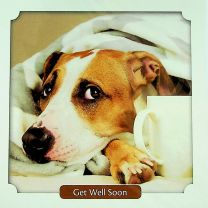 Get Well Card TE4146XA