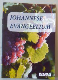 John's Gospel - Estonian
