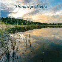Thinking of you Card CDC330