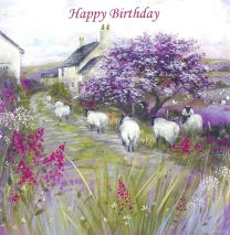Birthday Card CDD113