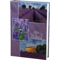 Holy Bible 257025