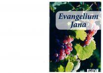 John's Gospel - Czech