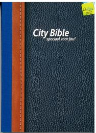 Pocket New Testament