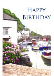 Birthday Card 8909