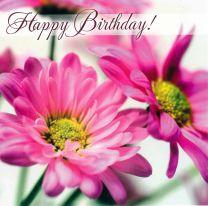Birthday Card TE40489A