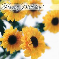 Birthday Card TE40519A