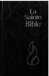 Holy Bible 11229