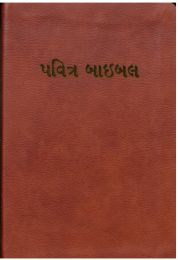 Gujarati Holy Bible Easy-to-Read
