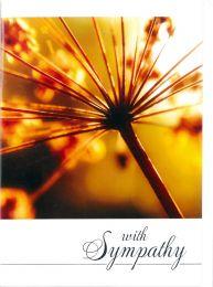 Sympathy Card TE51269A