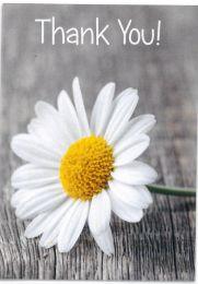 Thank You Card TE20039A