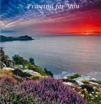 Praying for You Card CD224
