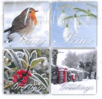 Christmas Cards, Assorted Pack of 20 - TC80060
