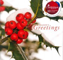 Christmas Cards, Holly, Pack of 10 CS10519
