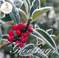 Christmas Cards, Holly, Pack of 5 TC80060/3