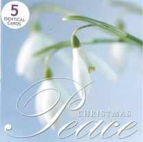 Christmas Cards, Snowdrop, Pack of 5 Cards