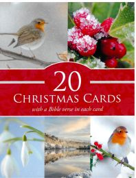 Christmas Cards Box of 20 TP805003